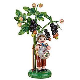 Herbstkinder Jahresfigur 2017 Schwarze Johannisberre  -  13cm