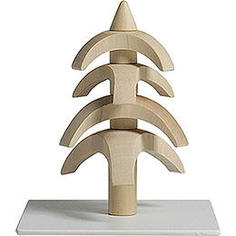 Twist Tree  -  White Beech  -  8cm / 3.1 inch